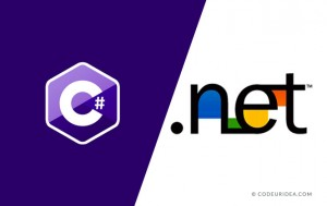 C# and dot net