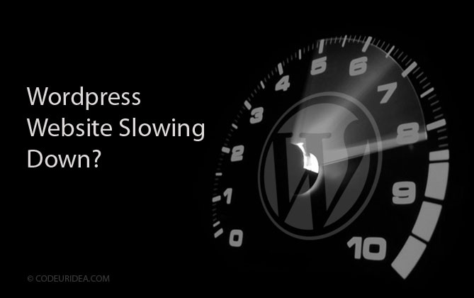 Speed of Wordpress Website